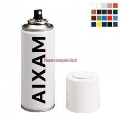 Bombe de peinture AIXAM